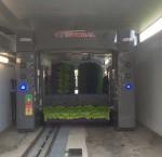 Туннельная мойка TWASH